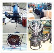 HSQX型不銹鋼耐腐蝕潛水泥砂泵