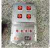 BXK防爆动力控制箱