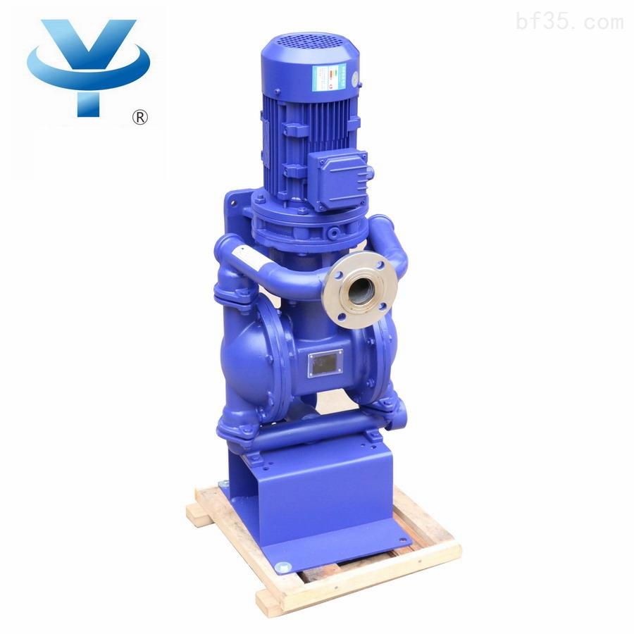 铸钢立式电动隔膜泵