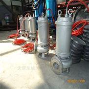 天津大口径潜水排污泵价格