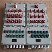防爆配电箱 防爆动力照明防爆电箱