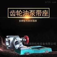 不锈钢齿轮油泵工业用抽油泵