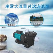 广东凌霄水泵海水泵水池循环带过滤网泳池泵