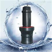 天津大排量軸流潛水泵
