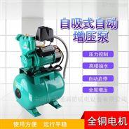 小型鑄鐵水井全自動家用自吸泵