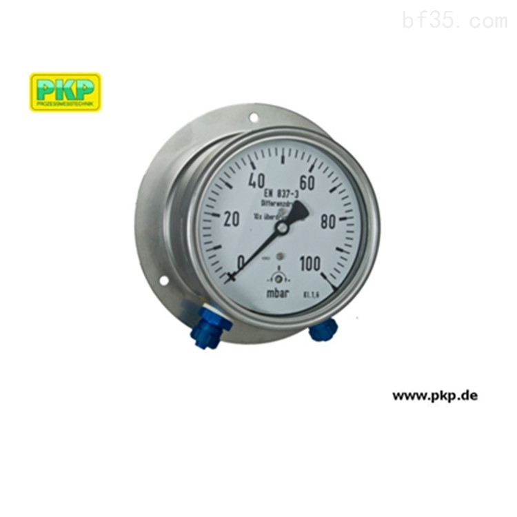 赫尔纳-供应PKP压力表PMR02